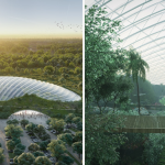 """Dans le plan """"absurde"""" visant à faire de la forêt amazonienne un coin gris de l'Europe"""