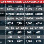 Coronavirus UK : L'épidémie se réduit, selon les estimations d'App