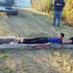 """Des cousins de Floride se disputent un python massif sur leur propriété : """"Mon Dieu ! Quel serpent !"""