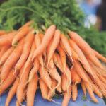 Le marché fermier du centre-ville de Sara Hardy accueille un marché en ligne