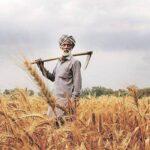 Le journal Icrier cite les lois agricoles comme un pas vers un marché agricole libre