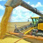 L'USDA augmente les estimations de soja brésilien de 126 millions de tonnes - O Presente Rural